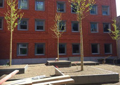 Aanleg intensieve daktuin: bomen op het dak! In een volgende fase wordt nog voor een frissen onderbegroeiing gezorgd - In Bloom