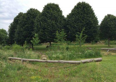Natuurspeeltuin - boomstam - brug - weidebeplanting - In Bloom