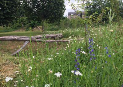 Natuurspeeltuin - boomstam - brug - weidebeplanting - bosgoed - In Bloom