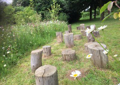 Natuurspeeltuin - boomstam - stap stronken - weidebeplanting - bosgoed - In Bloom