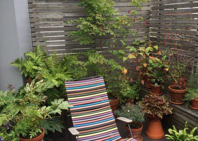 Noordgericht terrasje - In Bloom