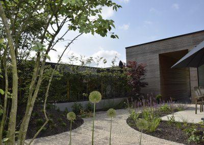 Patiotuin - Alliums - Meerstammige bomen - Japanse esdoorn - gezellig terras - In Bloom