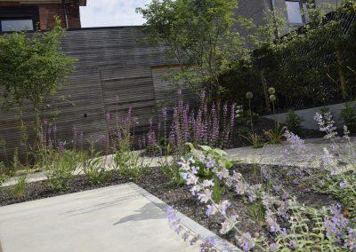 Patiotuin met grind - meerstammige bomen - bijenpalnten - In Bloom