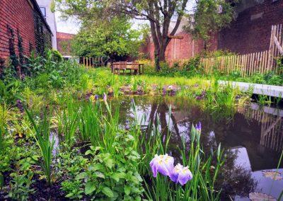Naturalistische stadstuin met vijver, 5 maanden na aanleg (In Bloom)
