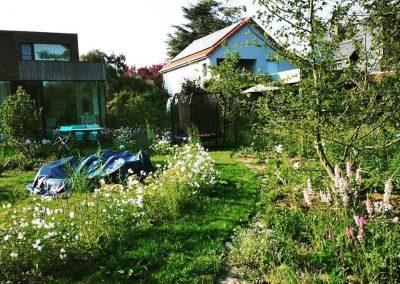 Naturalistische gezinstuin: wandelen tussen de bloemen - In Bloom